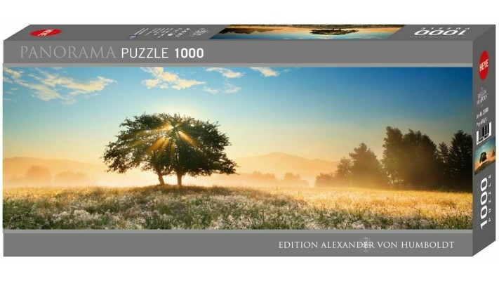 Panorama 1000 Puzzle - Play of Light (EN)